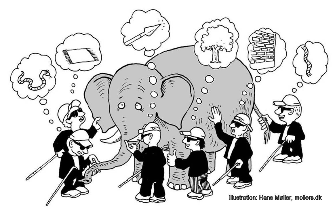 Image result for blind men elephant