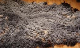 woolen fleece