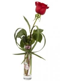 red-rose-bud-vase